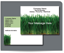 Picture of Tall Green Grass Postcard, Standard